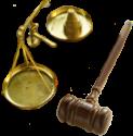 Bírság garancia